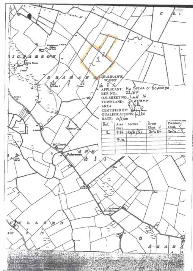 Forestry, Srahane, Ballysimon, Co. Limerick
