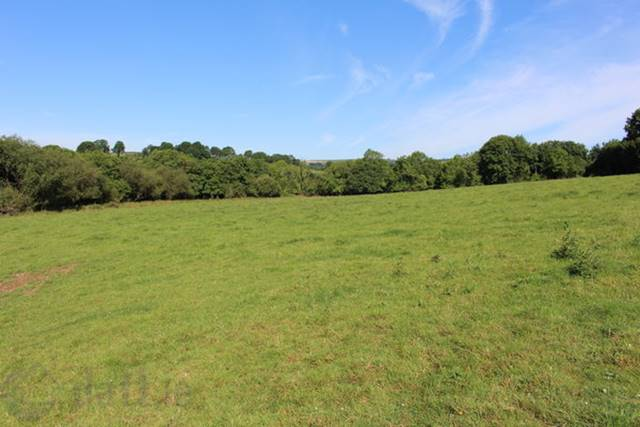 Millquarter, Monaseed, Gorey, Co. Wexford