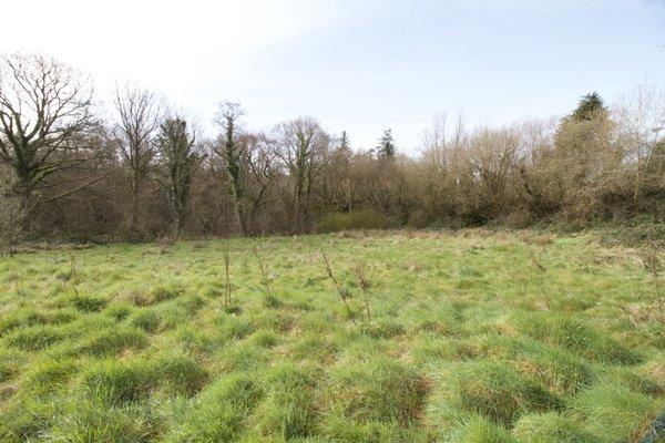 Parkvale, Kilgibbon, Bree, Enniscorthy, Co. Wexford