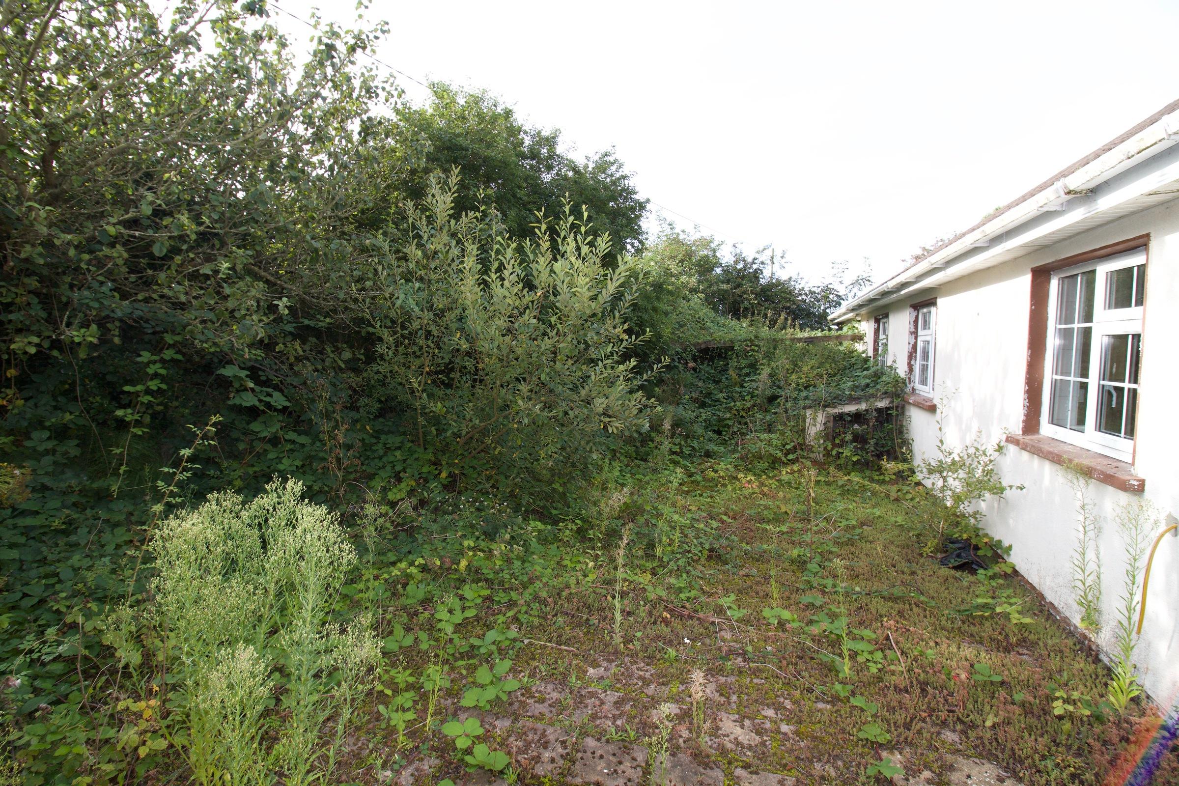 Bornacourtia, Kilmuckridge, Co. Wexford