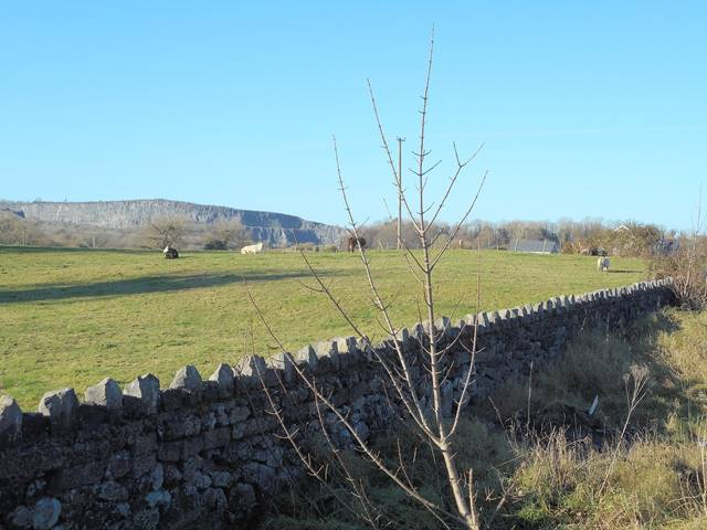 Site No. 6, Site No. 6 Loughville, Lahinch Road, Ennis, Co. Clare