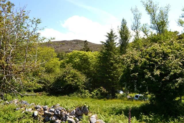 C. 1 Acre Site For Sale, Pontoon, Castlebar, Co. Mayo