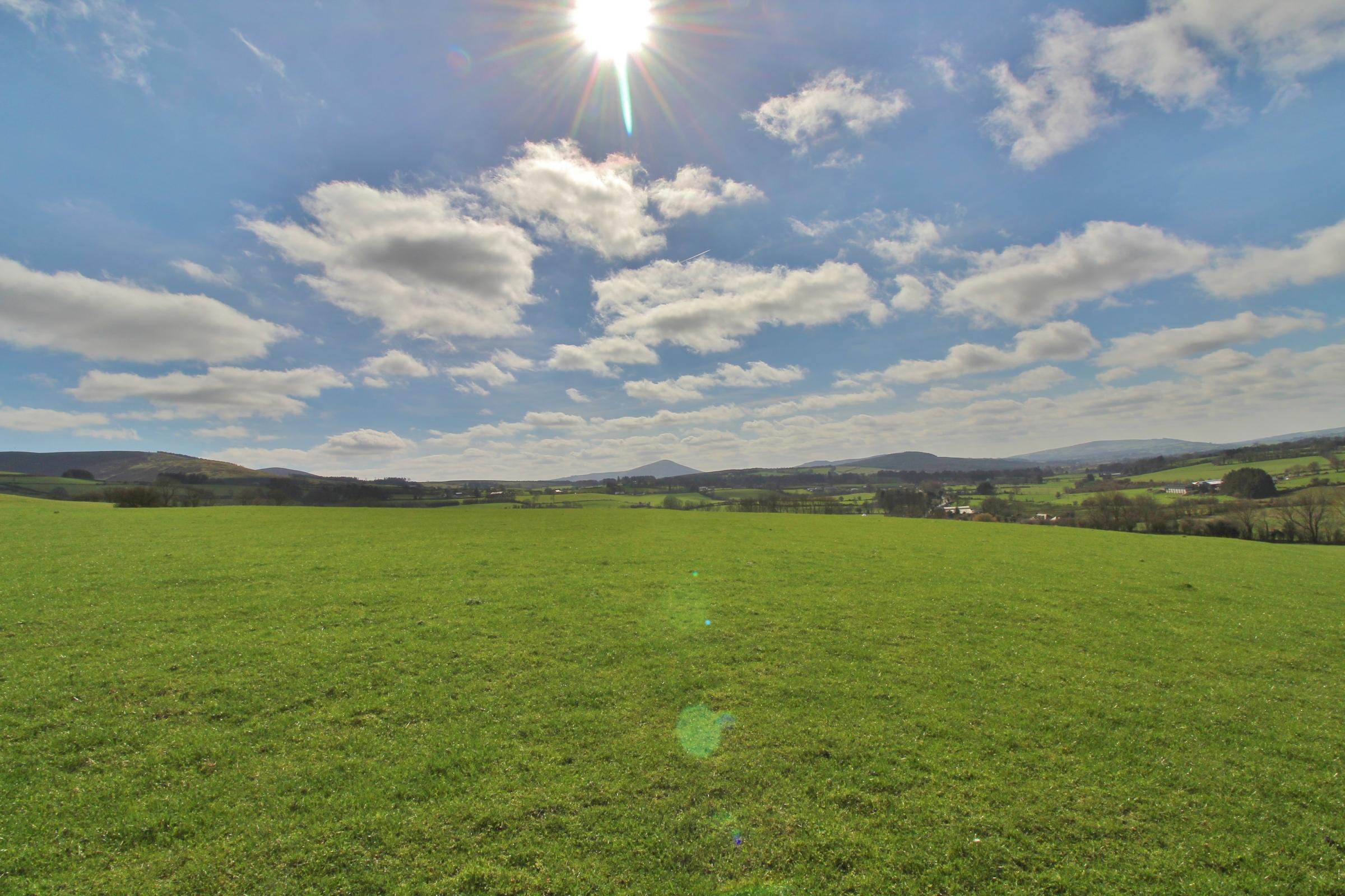 Land C. 18.8 Acres/ 7.6 Ha;, Kilbaylet Lower, Donard, Co. Wicklow