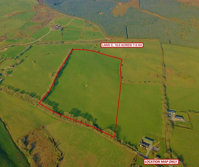 Land C. 18.8 Acres/ 7.6 Ha;, Kilbaylet Lower, Donard, Co. Wicklow