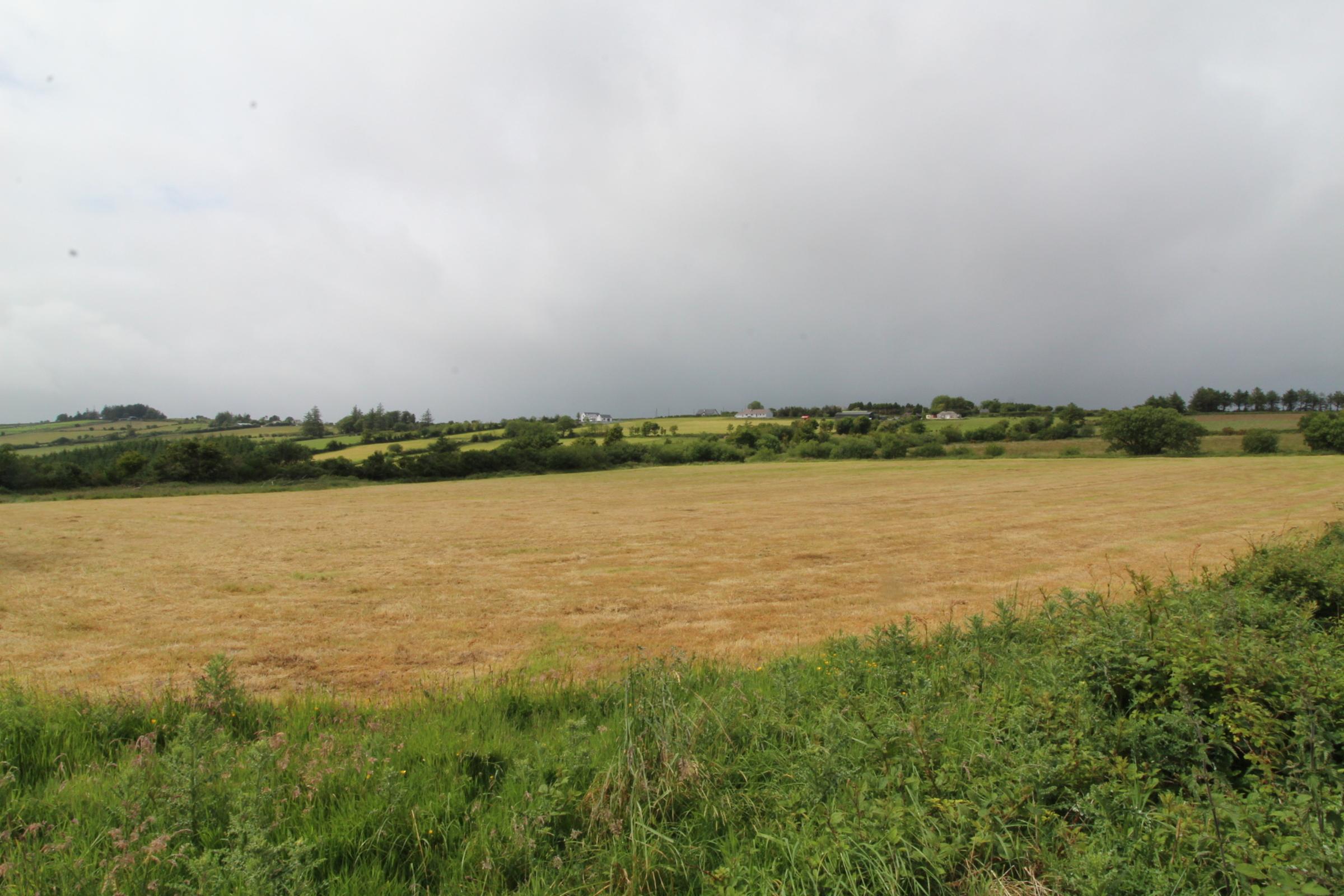 Lisdangan, Newmarket, Co. Cork