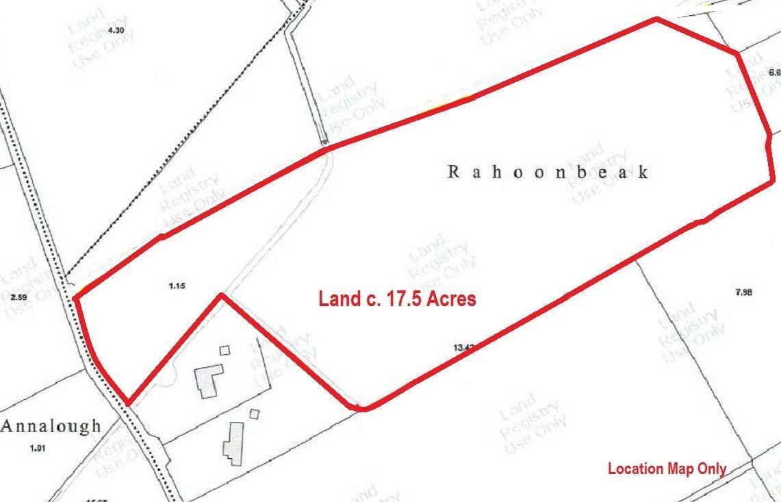 LAND C. 17.5 ACRES/ 7.1 HA., RAHOONBEAK, Colbinstown, Co. Kildare