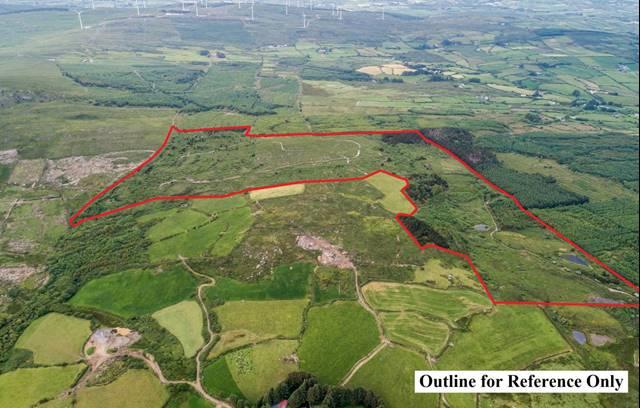 c. 74 acres at Mount Kid, Coolboy, Caheragh