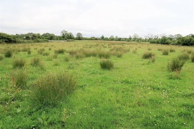 For Public Auction c. 30 Acres Lands Lisnaponra, Logaphuill, Castlebar, Co. Mayo
