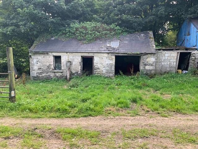 Derelict Cottage On C. 1 Acre, Crosscool Harbour, Blessington, Co. Wicklow