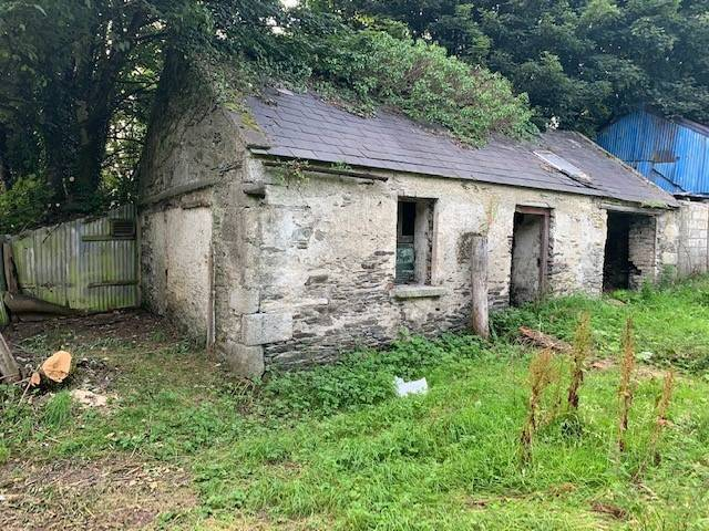 Derelict Cottage On C. 1 Acre, Crosscool Harbour, Blessington, Co. Wicklow