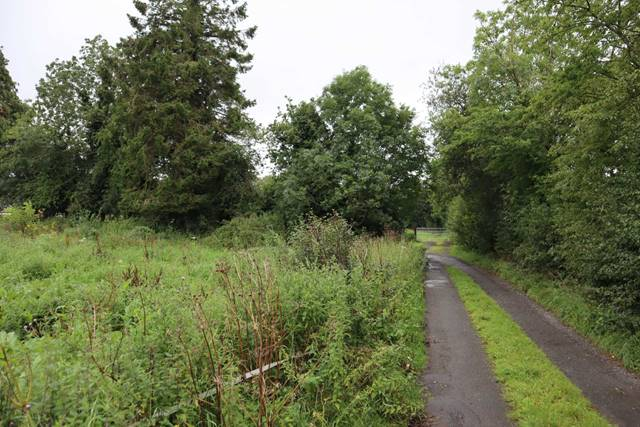 Site For Sale, Kill Beg