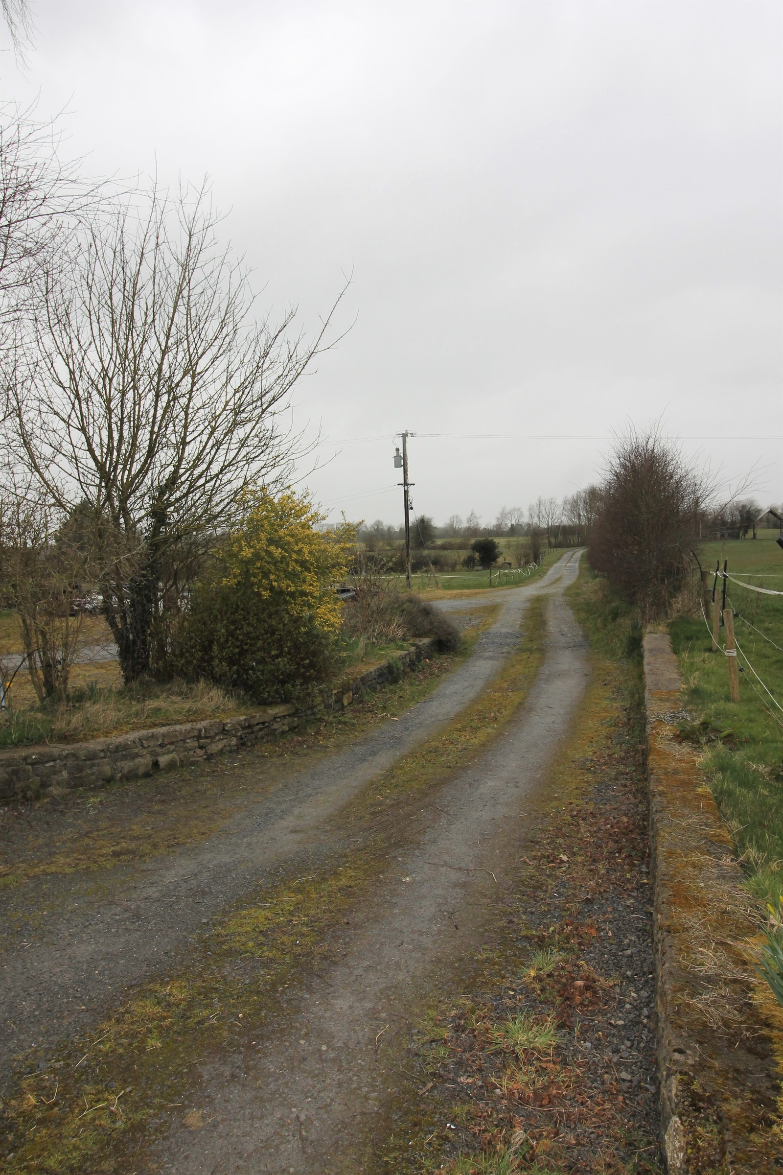 Curraheen, Horse and Jockey, Thurles, Co. Tipperary