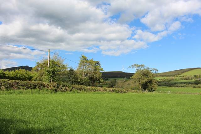 Bullring Cross, Ballybeg, Ferns, Co. Wexford