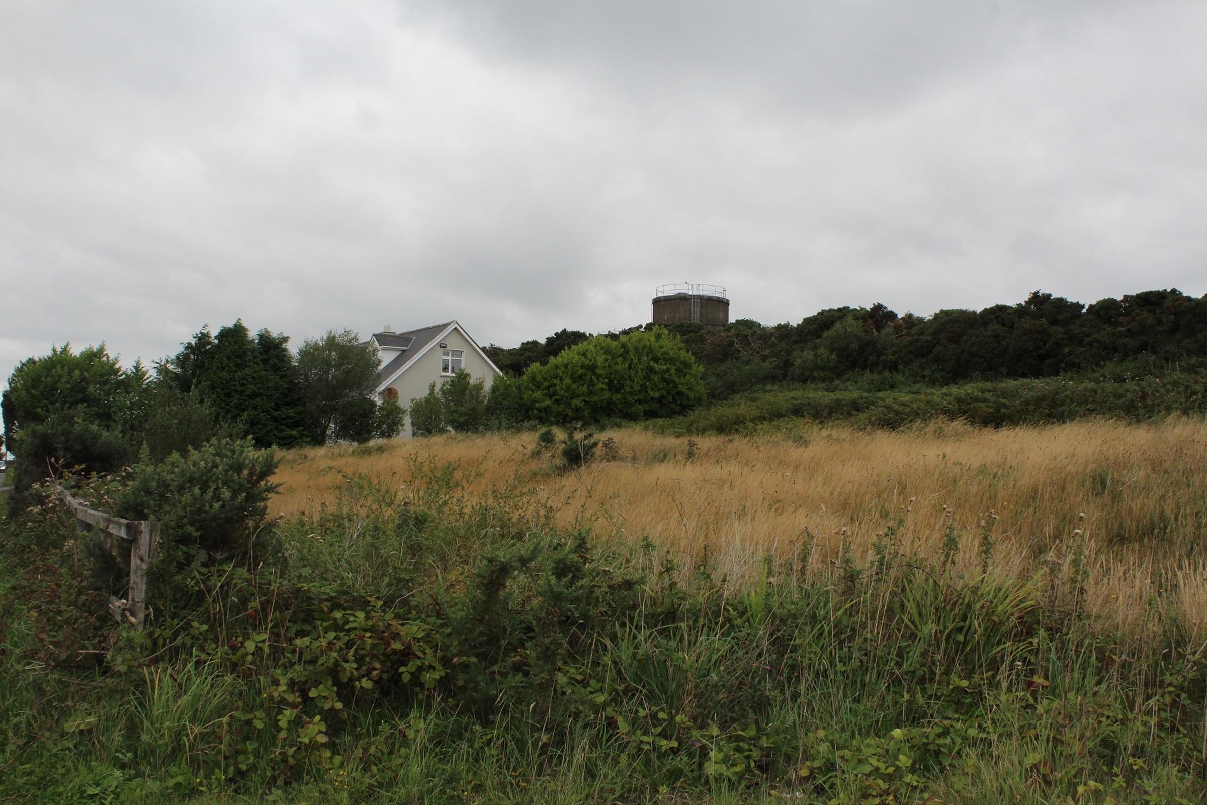 Meenane, Watergrasshill, Co. Cork