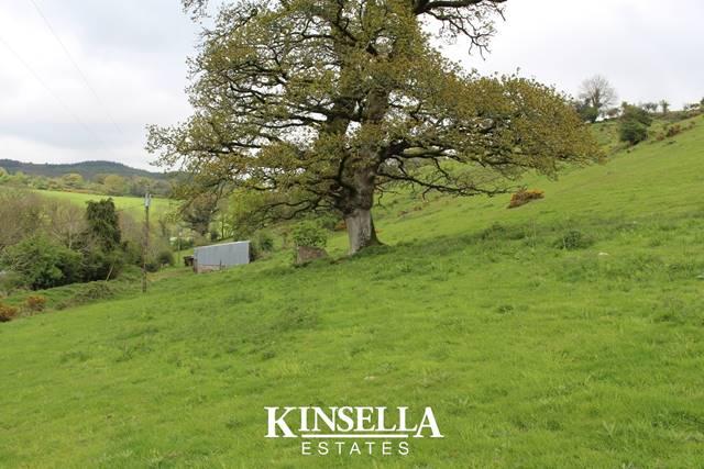 Knocknaree Lower, Avoca, Co. Wicklow