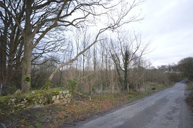 C.19 Acre Forestry Holding at Knockeen, Tullow, Co Carlow
