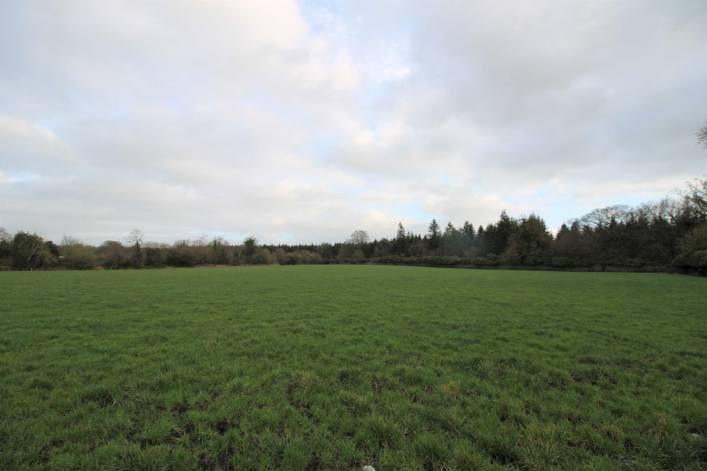 Kilcooley, Gortnahoo, Co. Tipperary
