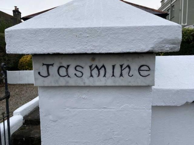 Jasmine, Ashbourne Avenue, South Circular Road, Limerick