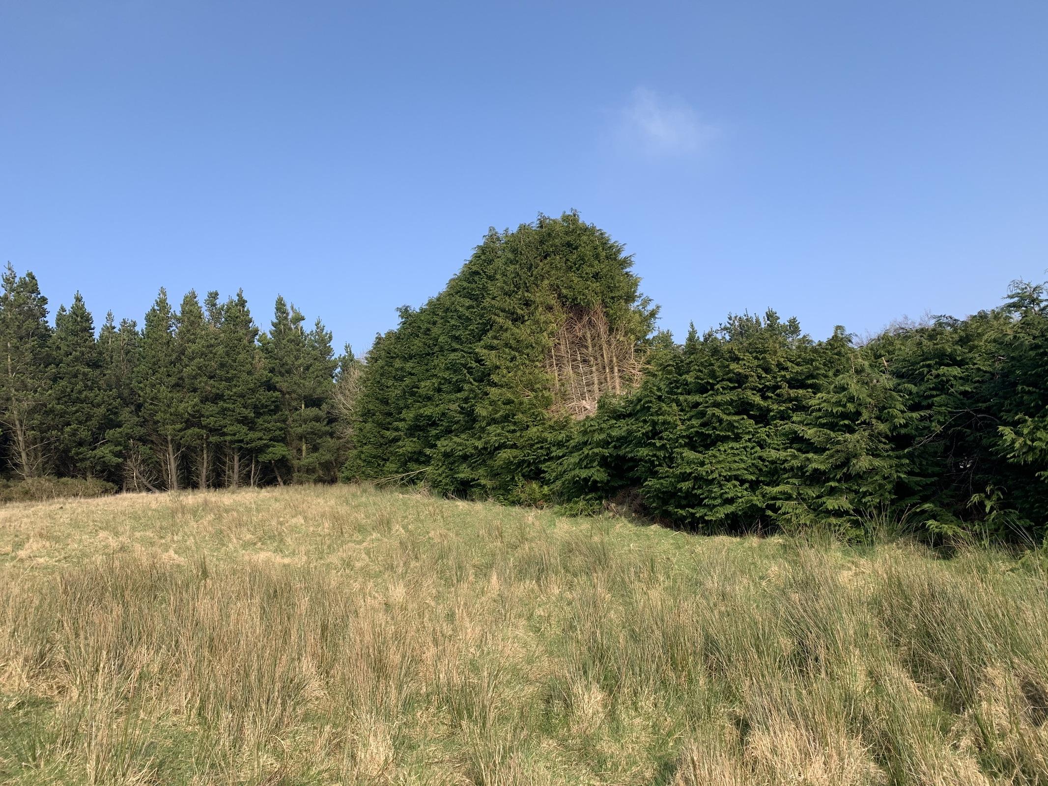 Land c. 1.1 Acres, Gap Road, Lacken, Co. Wicklow