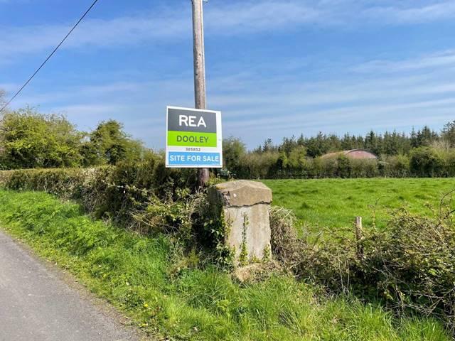 Caherelly, Grange, Co. Limerick