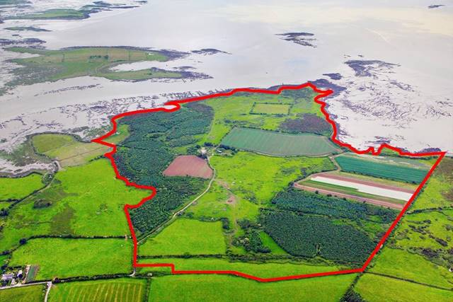 Courtbrown, Askeaton, Co. Limerick
