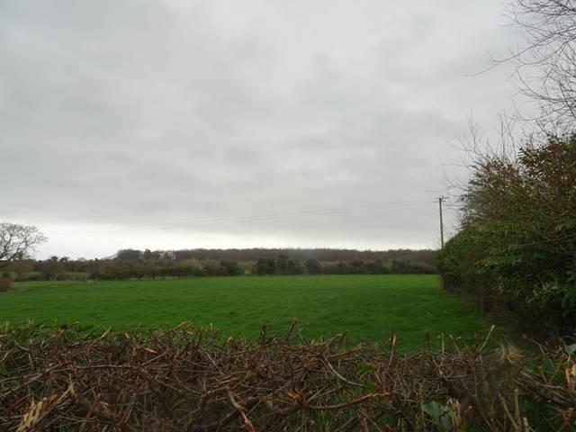 Ballyvocogue, Askeaton, Co. Limerick
