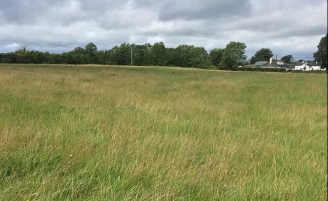 Ballycosney, Tullamore, Co. Offaly