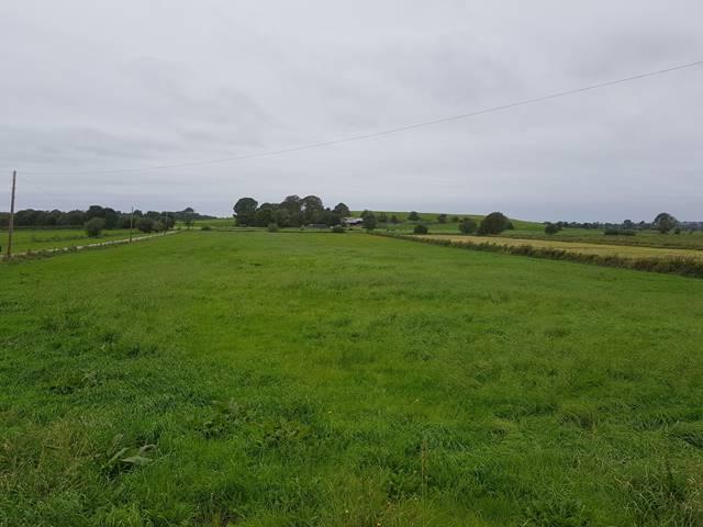 Grange, Kilmallock, Co. Limerick