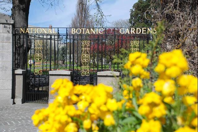 Apartment 5, Botanic Hall, Addison Avenue, Glasnevin, Dublin 11