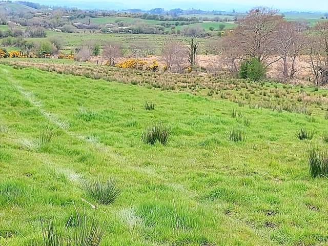 Lands For Sale Atticahill, Manulla, Castlebar, Co. Mayo