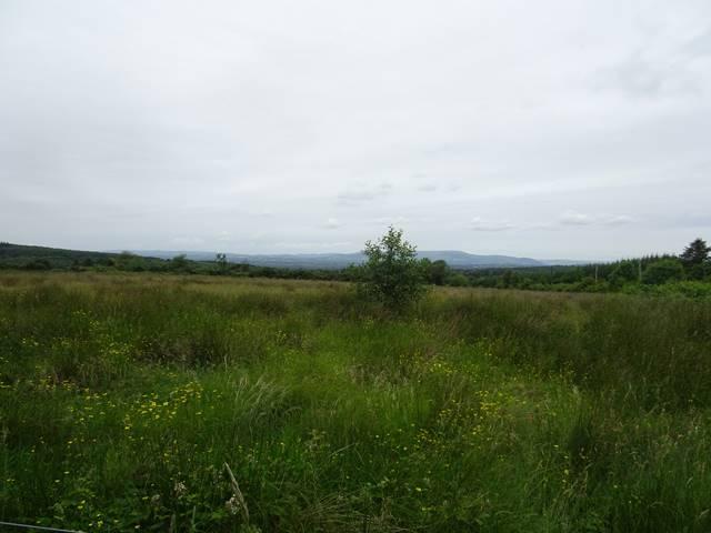 Garranbawn, Murroe, Co. Limerick