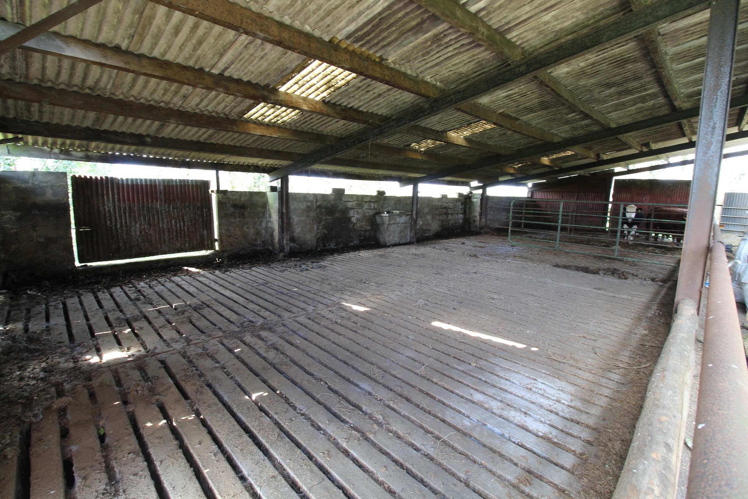 Derelict Farmhouse & Farmyard on C. 1.4 Acre / 0.56 Ha., Kilbaylet, Donard, Co. Wicklow