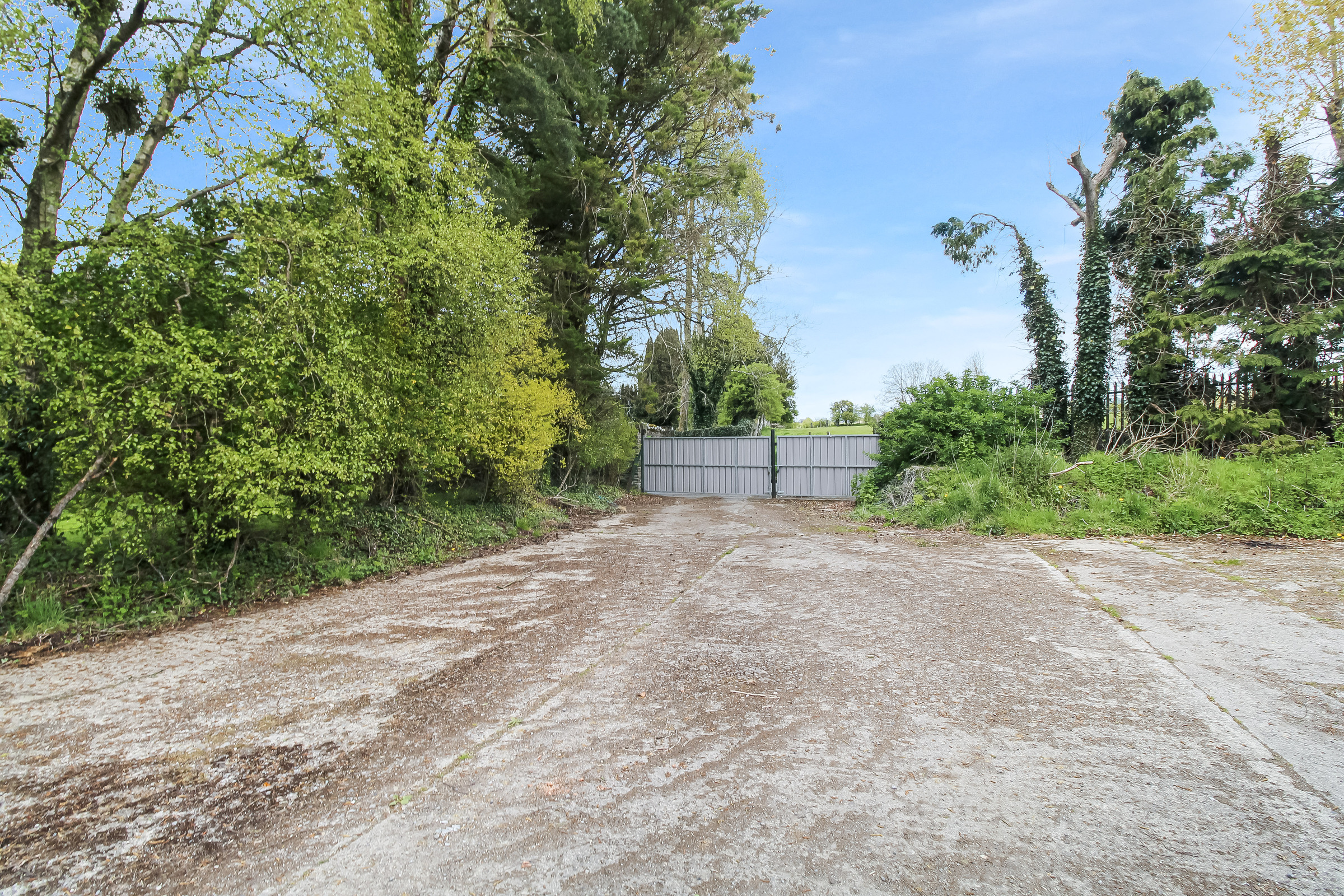 Springhills, Yard & Residence on c.18.5 Acres, Ballymore Eustace, Co. Kildare
