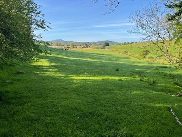 Land c. 13 Acres, Kilbaylet, Donard, Co. Wicklow