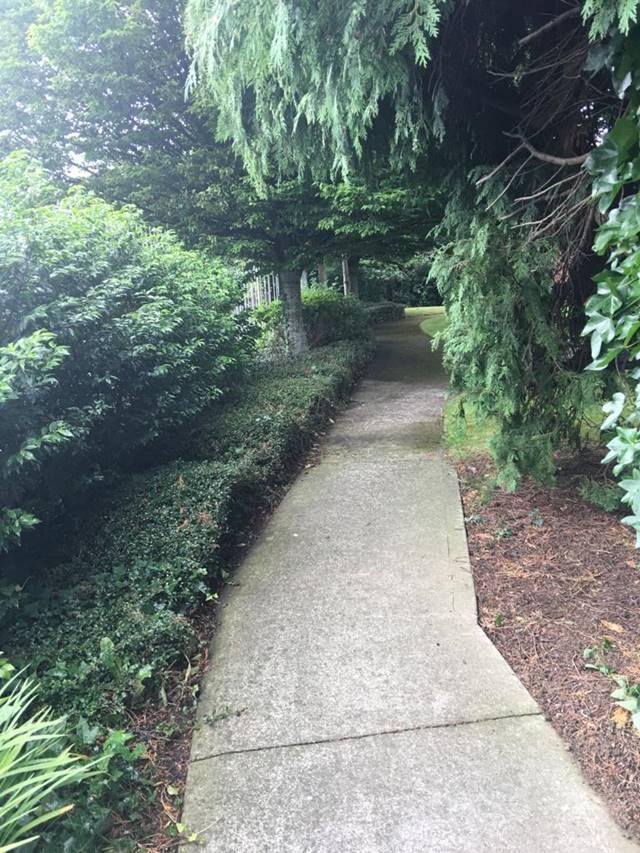 13 Northbrook Walk, Ranelagh, Dublin 6