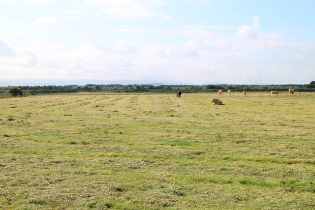 Leabeg, Boora, Tullamore, Co. Offaly