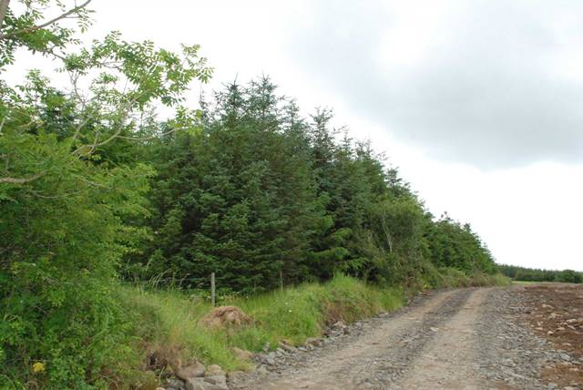 Carrowmore Lacken, Ballina, Co. Mayo