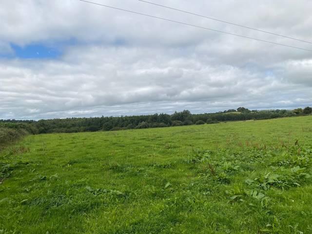 Knockaun & Smithstown, Newmarket on Fergus, Co. Clare
