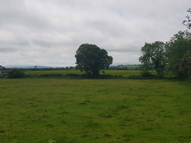 Ballybricken South, Grange, Kilmallock, Co. Limerick